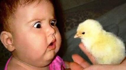 Реакция на деца във фермата - Смях