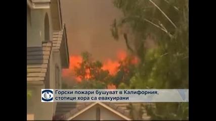 Огнена стихия в Калифорния