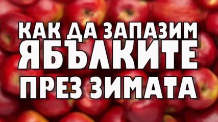 Как да запазим ябълките през зимата