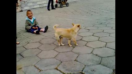 Куче Откача ;d