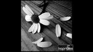 Sane ft Stella - Tears (richard Marxx Tribute) + Текст