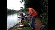 Рибата как го фрасна