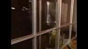 Criss Angel - Трик С Асансьор