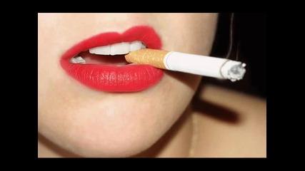 2010 sisi biju sigara balada