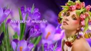 Пролетно настроение! ... ( Silvard mysic) ...
