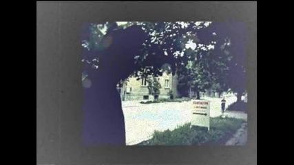 Graifera - Track Terrorizum