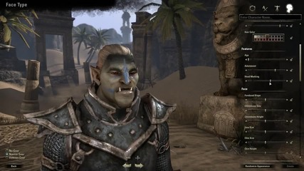 The Elder Scrolls Online_ Character Creation