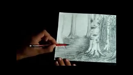 Speed Drawing of A Forest