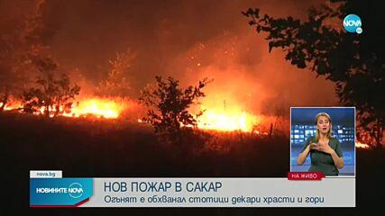 Нов пожар пламна в Сакар планина