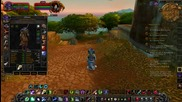 A Druids Journey through the World of Warcraft