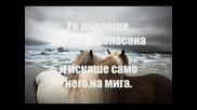 Джулия Бел - Кобилка