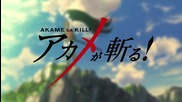 Akame Ga Kill! episode 3 (бг събс)