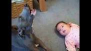 Куче И Бебе Плачат Заедно