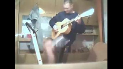 Най Бързият китарист