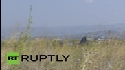 Syria: Russian fighter jets command skies around Latakia