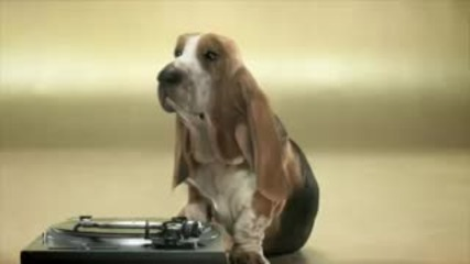 Куче Прави Beatbox - мн лудо ;d