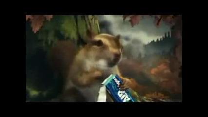 Смешна реклама с катерица