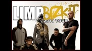 Limp Bizkit - Why Try [gold Cobra 2010]