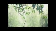 Дъжд заваля - Маргарита Хранова