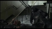 Dawn of the Planet of the Apes / Maymunlar Cehennemi: Safak Vakti (2014) Turkce Dublaj