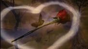 Циганската любов
