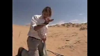 Остин Стивънс Намира Черна Мамба В Намибия
