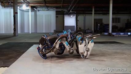 Робот върши удивителни неща в полза на хората