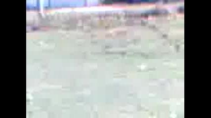 Video 003a