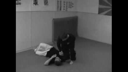 Combat Sambo Vlk