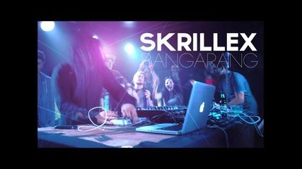 Skrillex - Drop it Hard !!!