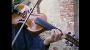 Любовна цигулка ( viola d,more музикални инструменти )
