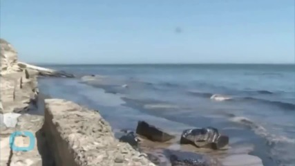 California In State of Emergency After Oil Spill