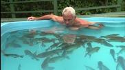 Да влезеш в басейн пълен с пирани