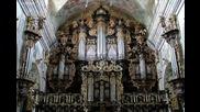 Бах - Токата и фуга в D минор, бароков тръбен орган