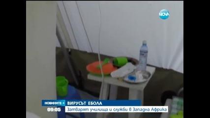 Ебола може да се разпространи като пожар, предупредиха експерти - Новините на Нова