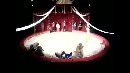 Софийски цирк на сцена