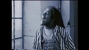 Maxi Priest - Some Guys Have All The Luck
