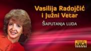 Vasilija Radojcic i Juzni Vetar - Saputanja luda Audio 1984