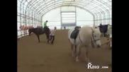 Как да се качиш на кон