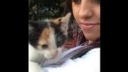 Семейство - Котки !