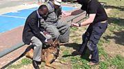 Полицейско куче показва как защитава човек при внезапно нападение!