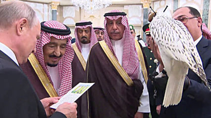 Saudi Arabia: Putin presents King Salman with Arctic falcon