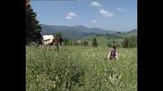 Виевска фолк група - Коньо,  коньо