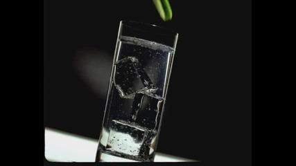 Savoy Gin - Реклама 2004