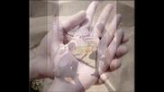 Tamer Hosny ( i m waiting you my love ) mix най - добрите песни на Тамер Хосни
