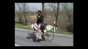 Циганите В Румъния