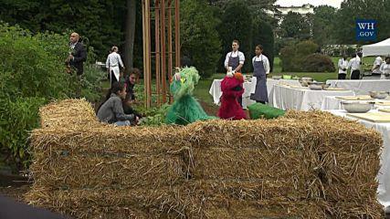 Мишел Обама вади моркови и картофи от градината на Белия дом