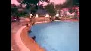 басейна в червен бряг