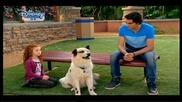 Куче С Блог Бг Аудио С03 Е07 Цял Епизод 10.05.2015