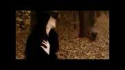 Полина - Не си отивай